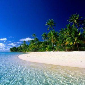 Лучшие пляжи Индии: ТОП-7 (лучшие из лучших)