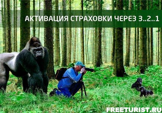 FreeStrahovka