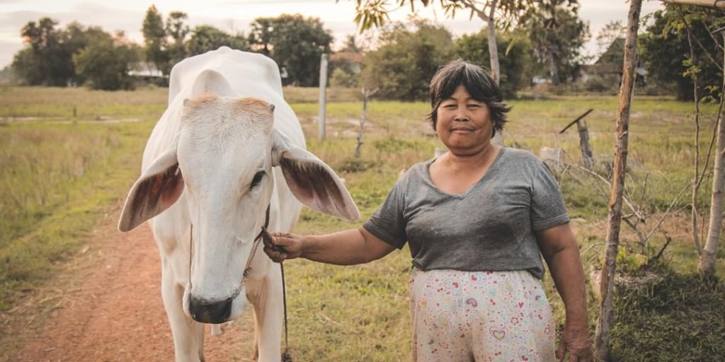 Камбоджа — экзотическая страна, её особенности и традиции
